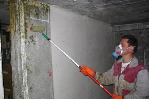 очищение стен
