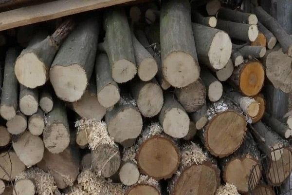 сложены дрова