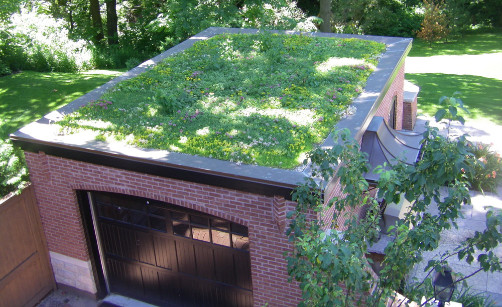 зелень на крыше гаража
